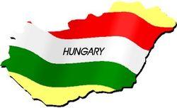 Каковы основные направления сотрудничества между Узбекистаном и Венгрией?