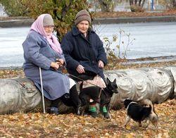 Что включает в себя принятая пенсионная реформа?