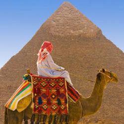 Туроператоры Египта выступят против новой политики
