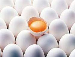Антимонопольный комитет проверяет цены на яйца в супермаркетах