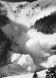 Жертвами лавины в Гималаях стали 135 человек