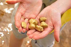 В 2011 году Украина начнет добывать золото