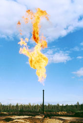 Россия уступила США лидерство на рынке газа