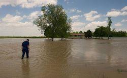 Штаты США страдают от сильных наводнений