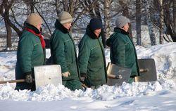 Иностранцы помогут убрать снег в Петербурге