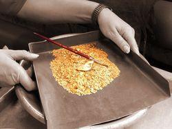 Возобновило работы золотобывающее предприятие в Казахстане