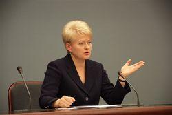 Парламент поддержал вето Президента на Закон «О лесах»