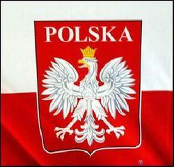 В каких товарах Узбекистана Польша заинтересована больше всего?