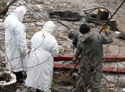Что стало причиной вспышки сибирской язвы в Китае?