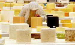 Порошенко планирует лично решить «сырный вопрос» в Москве