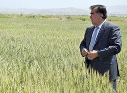 Куда могут перенести столицу Таджикистана?