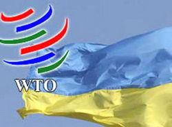 Что получит Украина взамен своего членства в ТС?