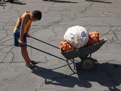 Сколько таджикских детей являются кормильцами в семьях?