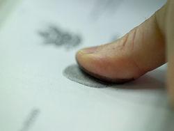 Для визы в Чехию понадобятся отпечатки пальцев