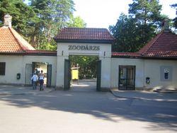 Что готовится к 100-летнему юбилею Рижского зоопарка?
