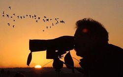 Какое направление экологического туризма развивается в Азербайджане?