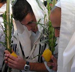 Почему в Израиле зажгут свечи во время праздника Суккот?