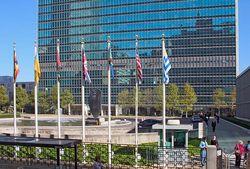 Армянские предприятия станут поставщиками программы ООН