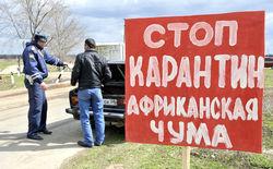 Почему Казахстан ограничил ввоз российских товаров?
