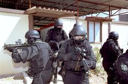 Кыргызским милиционерам могут запретить вторгаться в частную собственность