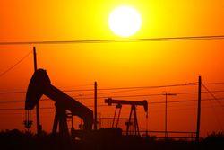 Беларусь инвестирует в добычу нефти Нигерии