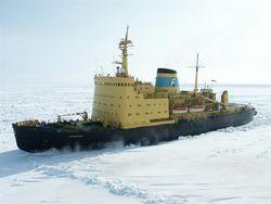 В ледяном плену стоят несколько судов