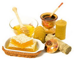 Сколько меда собрали узбекские пчеловоды?