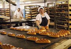 Инвесторам: в Азербайджане будет построен крупный хлебозавод