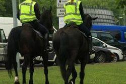 Донецкая милиция пополняет свои ряды животными