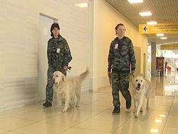 Для чего в Москве усиливают уровень безопасности?