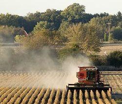 фермерство в Азербайджане
