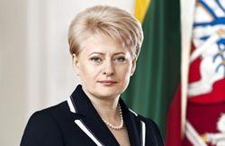 Грибаускайте: «Литве важна помощь Швеции»