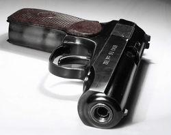 Во Львовском университете МВД не досчитались 140 пистолетов Макарова