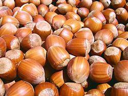 Инвесторам: в Грузии планируется рекордный урожай фундука
