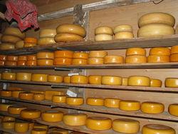 Армянский сыр открывает российский рынок