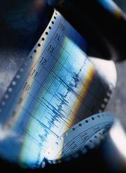 Каковы последствия землетрясения в Тихом океане магнитудой в 6,5?