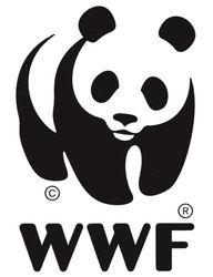 Как WWF продолжает развитие в России?