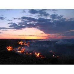 В Казахстане горит степь