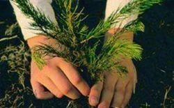 Таджикские садоводы набираются опыта в Европе