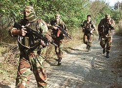 Как прошла ликвидация боевика в Чечне?