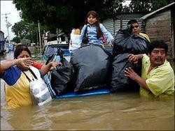 К чему привели сильные дожди в Мексике?