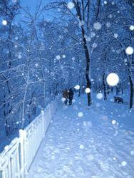 Москву засыпало большим количеством снега