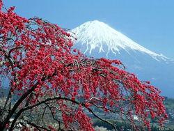 Чем грозит Японии вулкан Фудзияма?