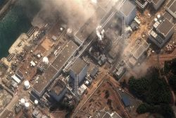 Выживет ли ядерная энергетика Японии в виду последних событий?