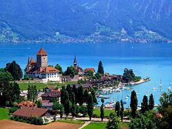 Кто является «двигателем» швейцарского рынка недвижимости?