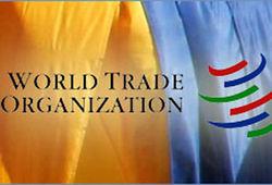 Киев и членство в ВТО: забота о национальной экономике или уступка Москве?