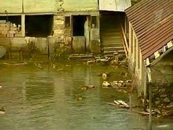 В Грузии жертвами стихии стали четыре человека
