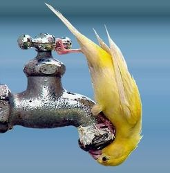 В Запорожской области более 20 тыс. людей остались без воды