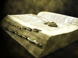 Полиция Москвы вернула похищенные Библии владельцам