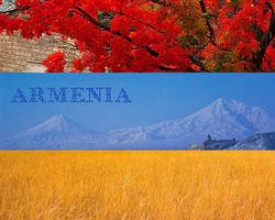 Локомотивы экономики Армении столкнулись с новой проблемой – дефицитом подвижного состава